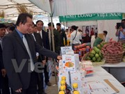 越南企业大力促进对柬埔寨贸易交流活动