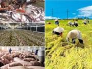 加入TPP后提升越南企业的竞争力