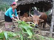 山区经济社会发展扶持政策所取得的效果
