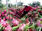 澳大利亚市场为越南农产品敞开大门