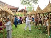 2016年顺化文化节别有风味的乡村集市