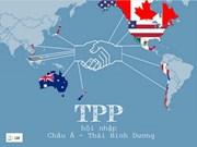 越南加入TPP后中小型企业力争上游提高竞争力