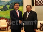 越南胡志明市同老挝占巴塞省开展深入合作