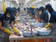 越南海产品出口质量未受到中部地区鱼类大批死亡现象的影响