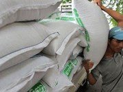 2016年上半年柬埔寨大米出口量达26.8万多吨