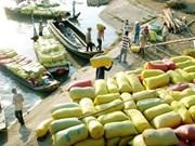 2016年上半年越南大米出口量达265多万吨