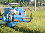 河南省为建设新农村筹集逾3180亿越盾