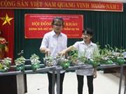 越南北江省青少年创新大赛获奖作品32个