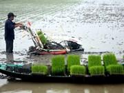 芹苴市希望与新西兰加强绿色农业合作