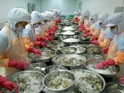 越南17家水产加工企业获巴拿马的出口许可证