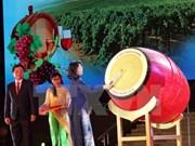 2016年宁顺省葡萄与葡萄酒节正式开幕
