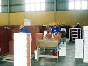 今年前10个月广宁省工业生产指数同比增长5.47%