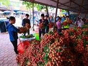越南农产品进军欧盟市场的机会