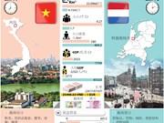 图表新闻: 越南-荷兰合作关系继续向前发展