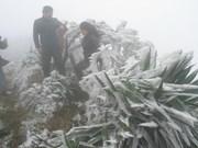 越南谅山和高平省经历低温雨雪冰冻天气(组图)