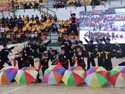 2018年胡志明市国际传统武术节(组图)