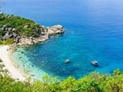 平巴岛上天堂的夏季
