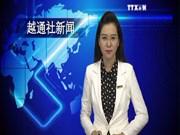 越通社新闻节目2015年8月4日