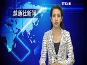 越通社新闻节目2015年8月5日