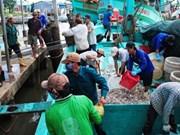 越南渔业捕捞总产量达逾134万吨