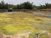 湄公河委员会警告九龙江平原旱灾和海水入侵灾害还将持续