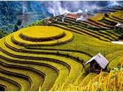 越南的风土人情