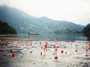 越南各地美丽的湖泊(组图)