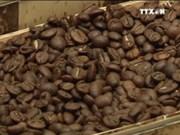 越南林同省在日本咖啡展览会上推介阿拉比卡咖啡