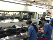 2016年前9月越南皮革及鞋类产品出口额增长7%