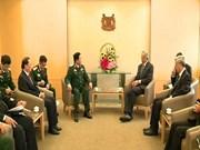 进一步推动越南与新加坡防务领域务实合作走向深入