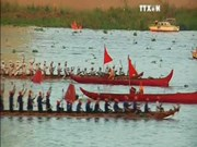 柬埔寨传统划船比赛吸引14630名运动员参加