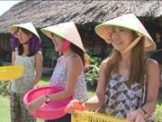 2016年胡志明市接待国际游客量520万人次
