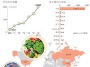 2016越南果蔬出口可圈可点