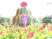 越南最大花塔亮相2017年同塔旅游周