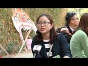 同年轻一代感受越南传统春节风味