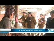越南对禽流感感染风险提出警告