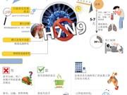甲型H7N9禽流感预防常识