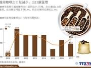 越南咖啡出口量减少 出口额猛增
