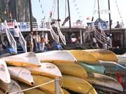 下龙湾皮划艇暂停营业