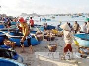 海洋环境事故发生一年后 广治省迎来积极信号