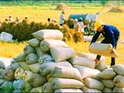 今年第一季度越南主力农产品呈现下降趋势