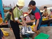 广平省海鲜市场重现活跃