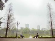 河内4月份春夏之时的魅力(组图)