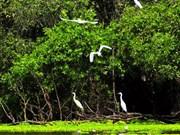 大湄公河次区域生物多样性保护工作面临诸多挑战