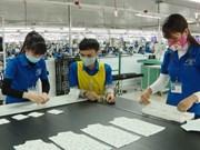 越南与欧盟贸易额呈现良好增长趋势