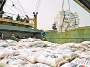 今年上半年越南大米出口有所回升