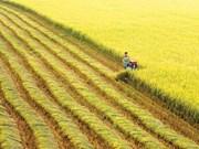 越南农业面临GDP增速3.05%的挑战