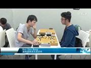 越韩围棋俱乐部  为促进文化交流搭建桥梁