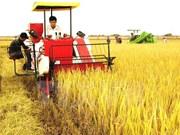 财务政策助推农村农业可持续发展