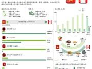 图表新闻:越南与加拿大传统友好关系